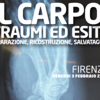 Logo conferenza - Damage control orthopaedic